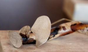 papier, sterling zilver en hout. pin 1